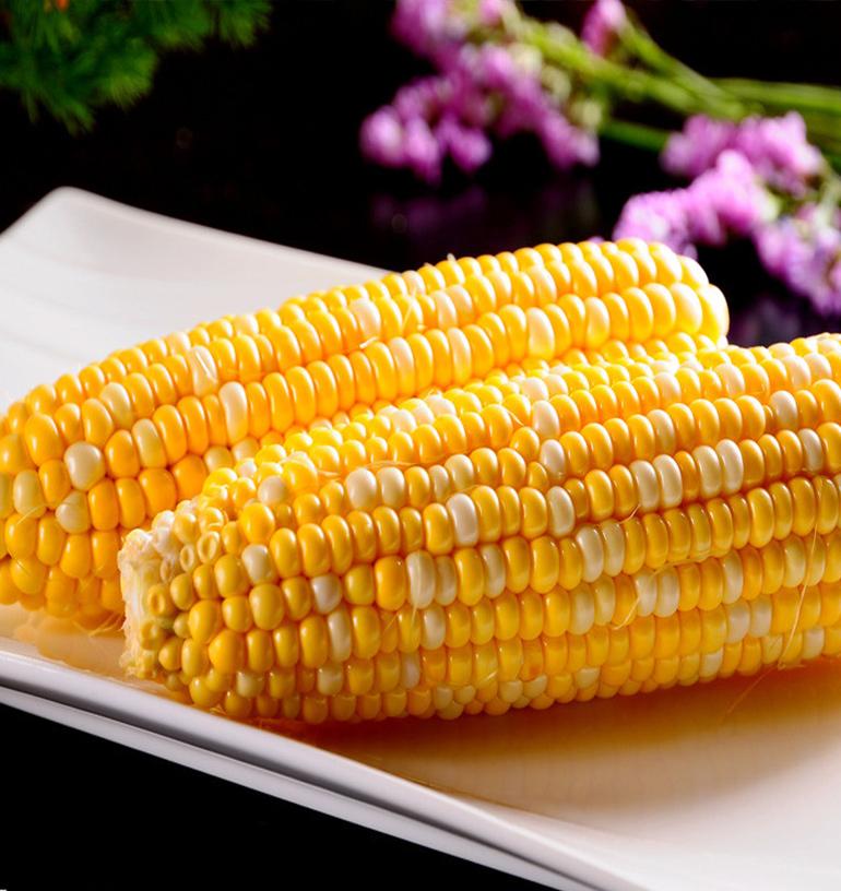 双色甜玉米